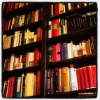 Librería La Kriticona
